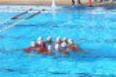 Despar Messina in finale scudetto: Gitto e Garibotti affondano Bogliasco