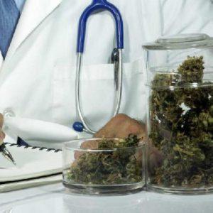 cannabis terapeutica gratuita