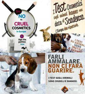 Mai più test sugli animali grazie a una startup siciliana