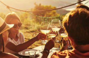 Startup: nasce Wineplan, il portale dedicato all'enoturismo