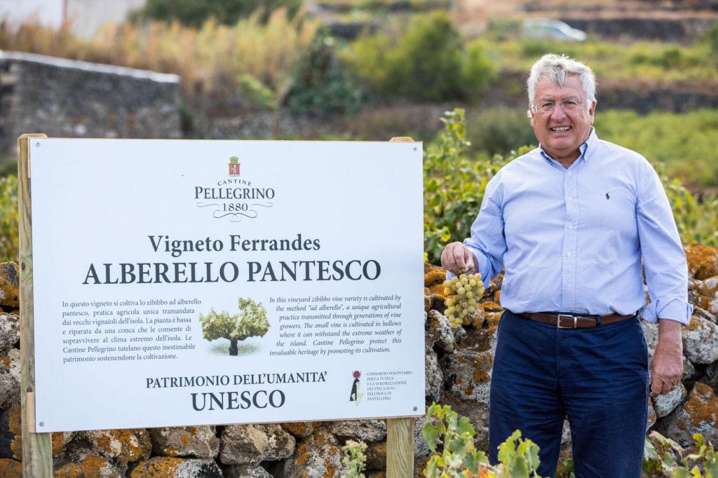 consorzio vini doc pantelleria