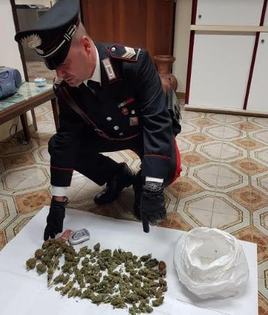 arresti monreale