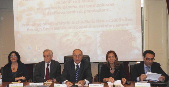 Tutela della biodiversità siculo-maltese