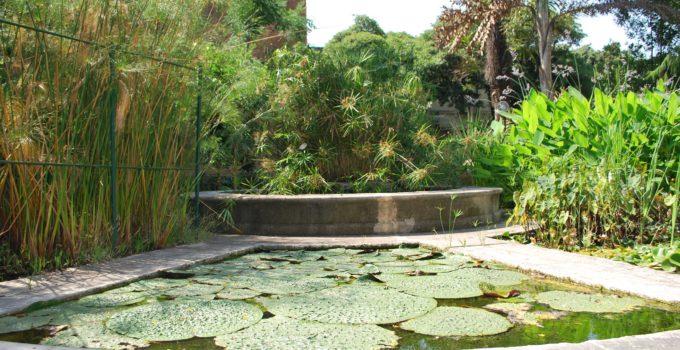 Orto Botanico Catania