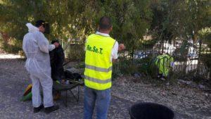 Verde pubblico Palermo: avviati tre importanti progetti di manutenzione