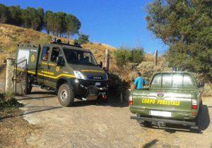 Incendi, stato di allerta e revoca ferie per personale del Corpo forestale
