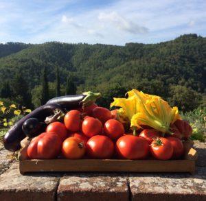 Fondi per biologico e allevamenti: spariti i bandi del PSR
