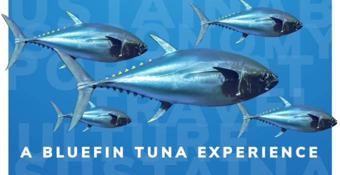 Tuna route