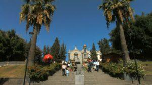 Sagra del Ficodindia dell'Etna Dop a Belpasso, esposizioni e degustazioni