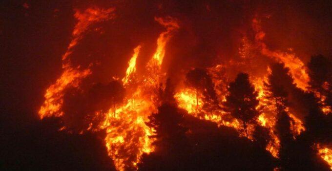 Brucia la provincia di Palermo