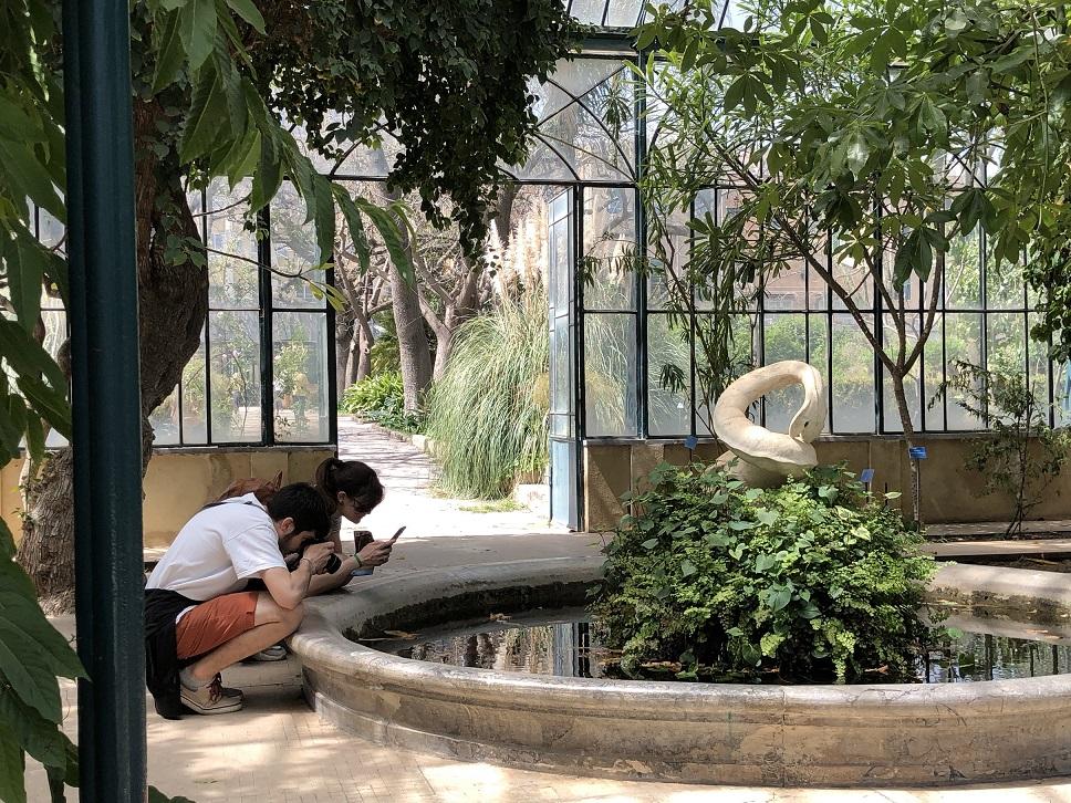 Riapre l'orto botanico di palermo